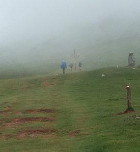 Les fantômes dans le brouillard.