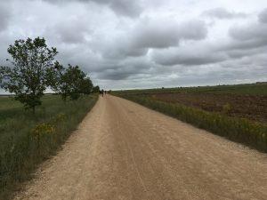 La Via Aquitana.