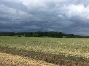 Avant l'orage.