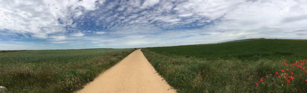 Le Chemin, dans la Meseta.