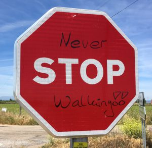 Never STOP walking!!